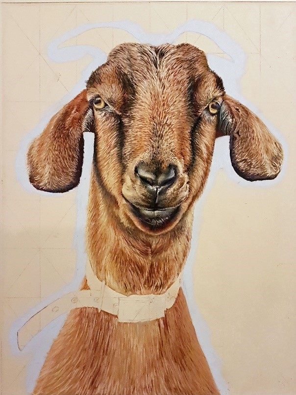 Part way through the process of painting the goat.