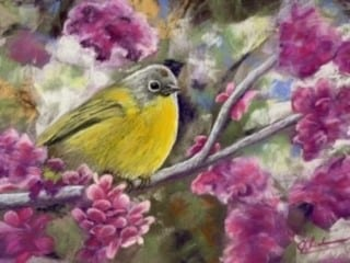 A pastel painting of a yellow Warbler bird.