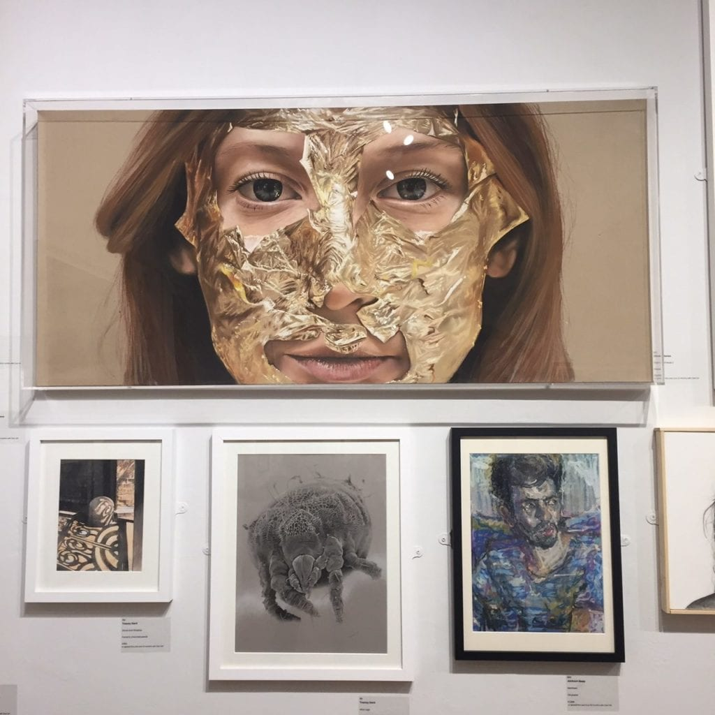 The Pastel Society Exhibition 1