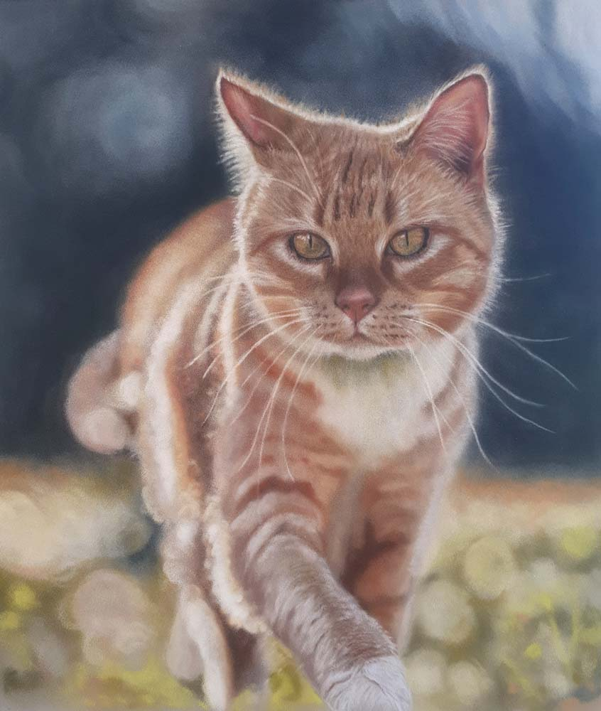 A pastel painting of a tabby cat, padding across a lawn.