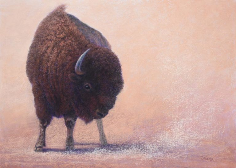 A pastel painting of a bison on a dusty plain