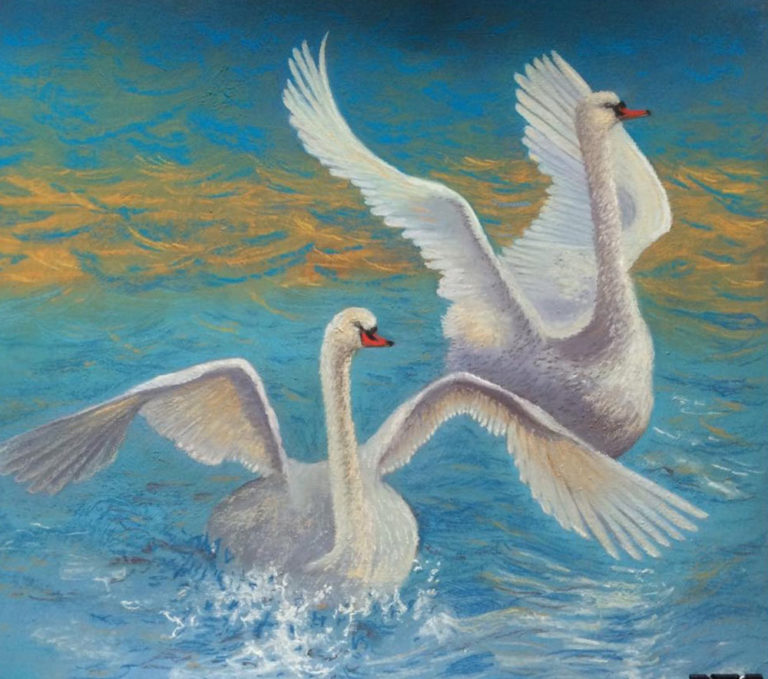 Wild Swans, by Kay Cullen.