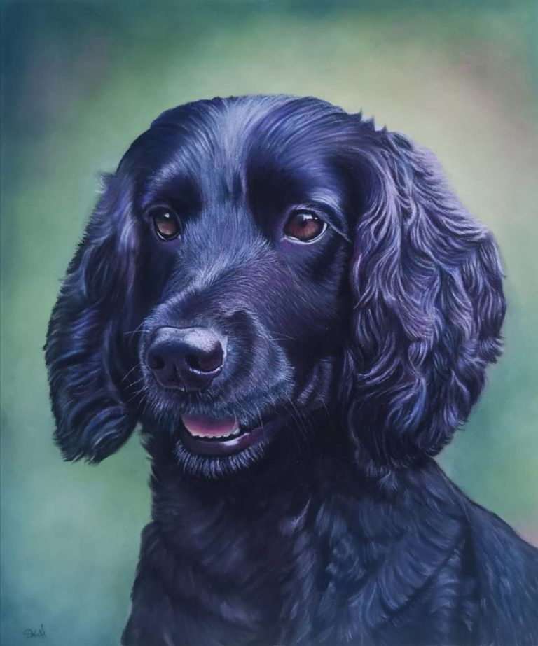 Bailey, by Sue Kerrigan-Harris.