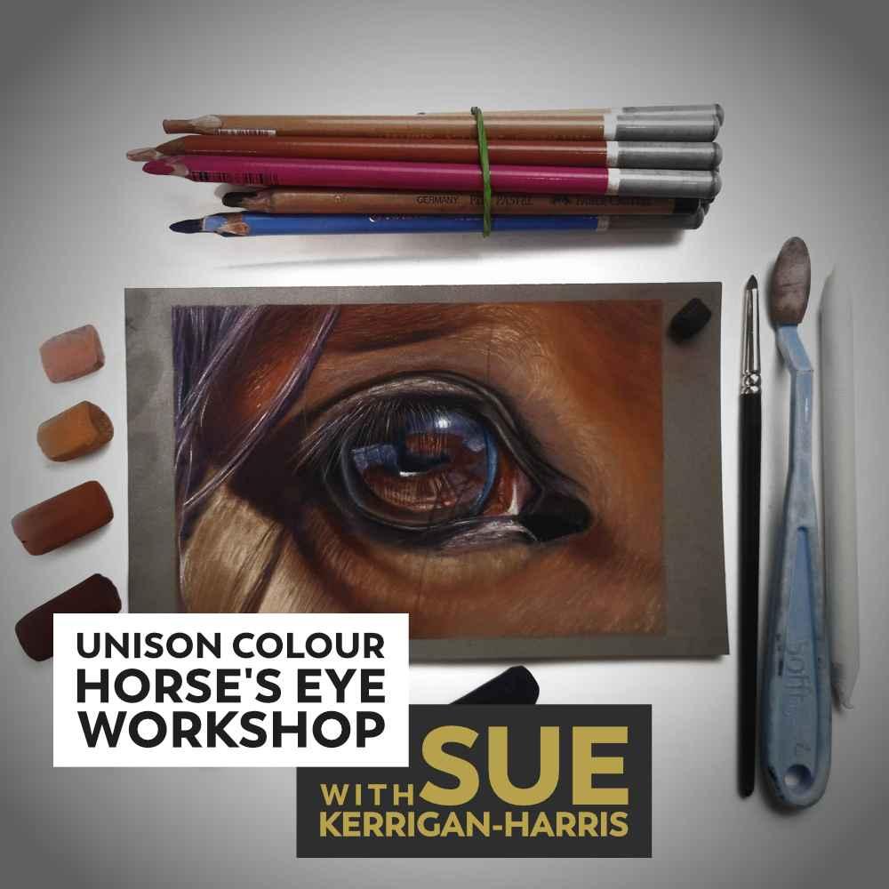 Horse's Eye Online Workshop with Sue Kerrigan-Harris
