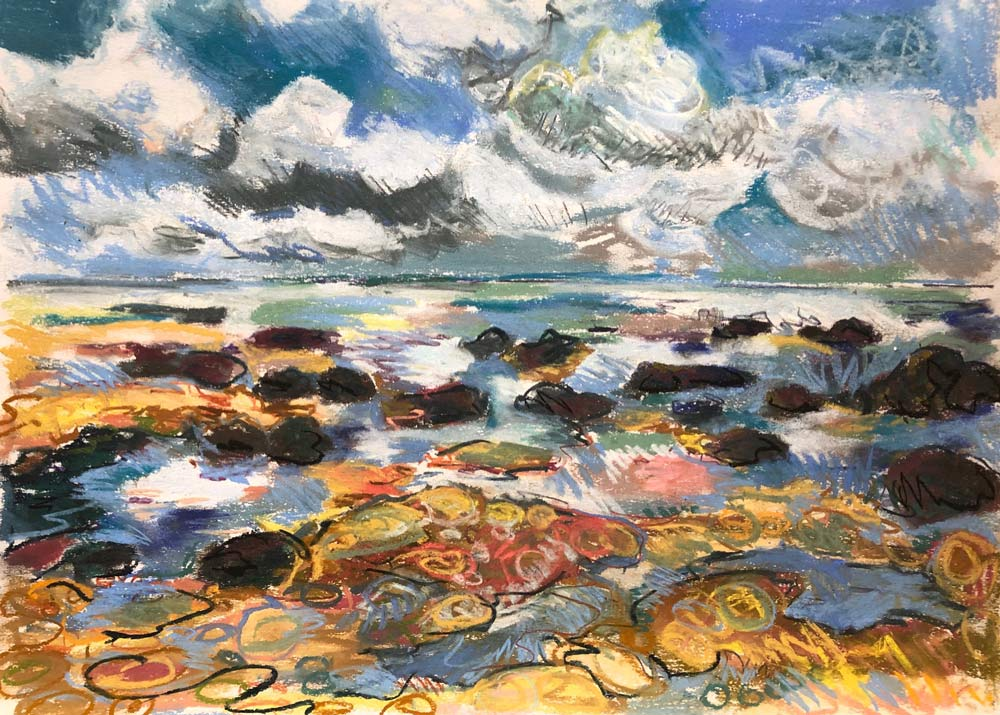 Tide Puddles, by Amy Shuckburgh.