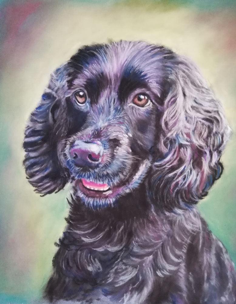 Bailey: The Artist's Experience 2