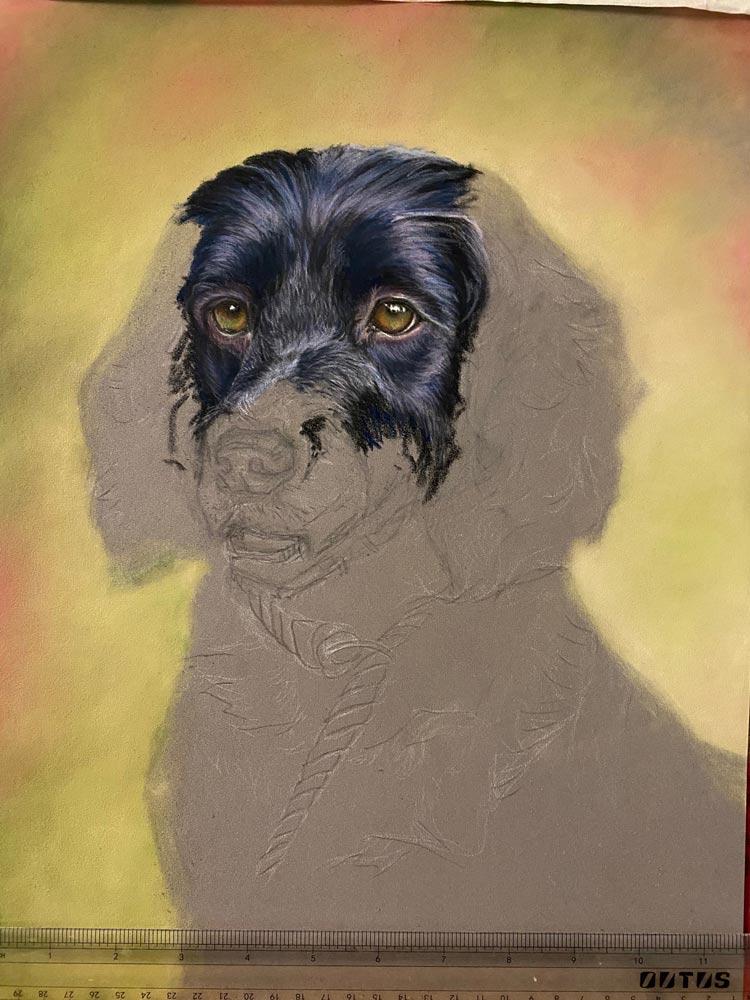 Bailey: The Artist's Experience 5
