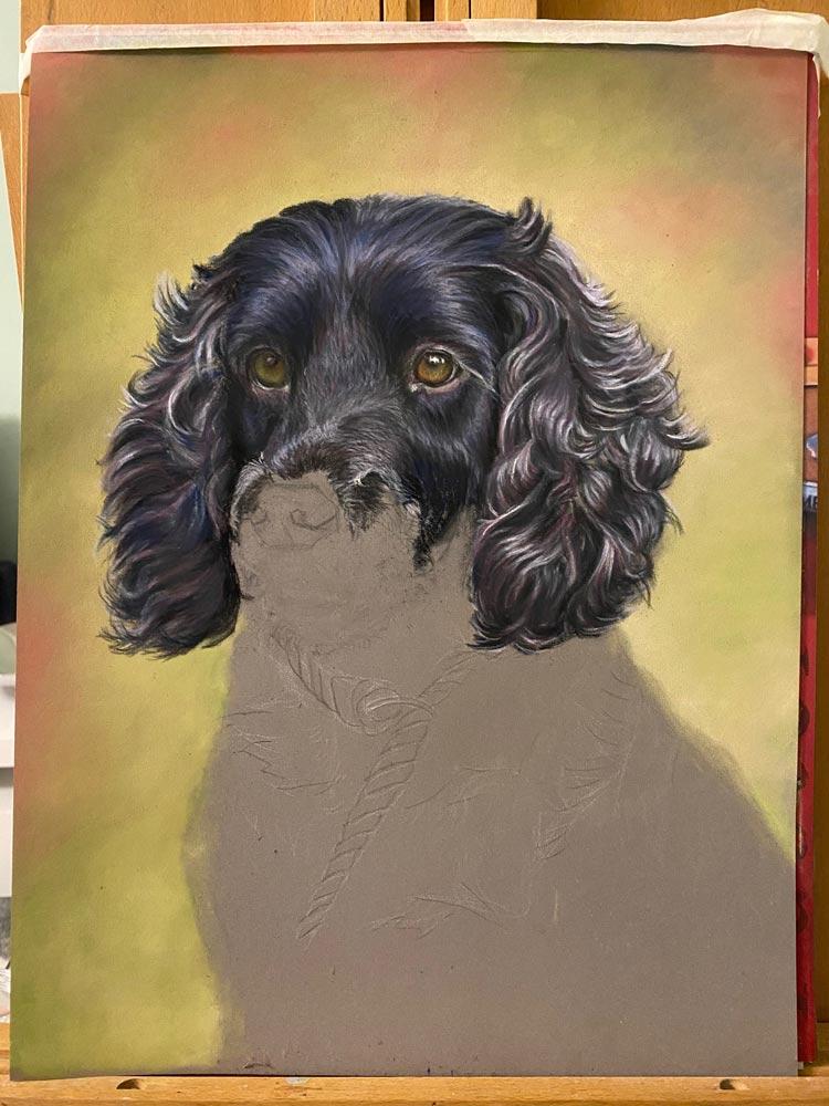 Bailey: The Artist's Experience 6