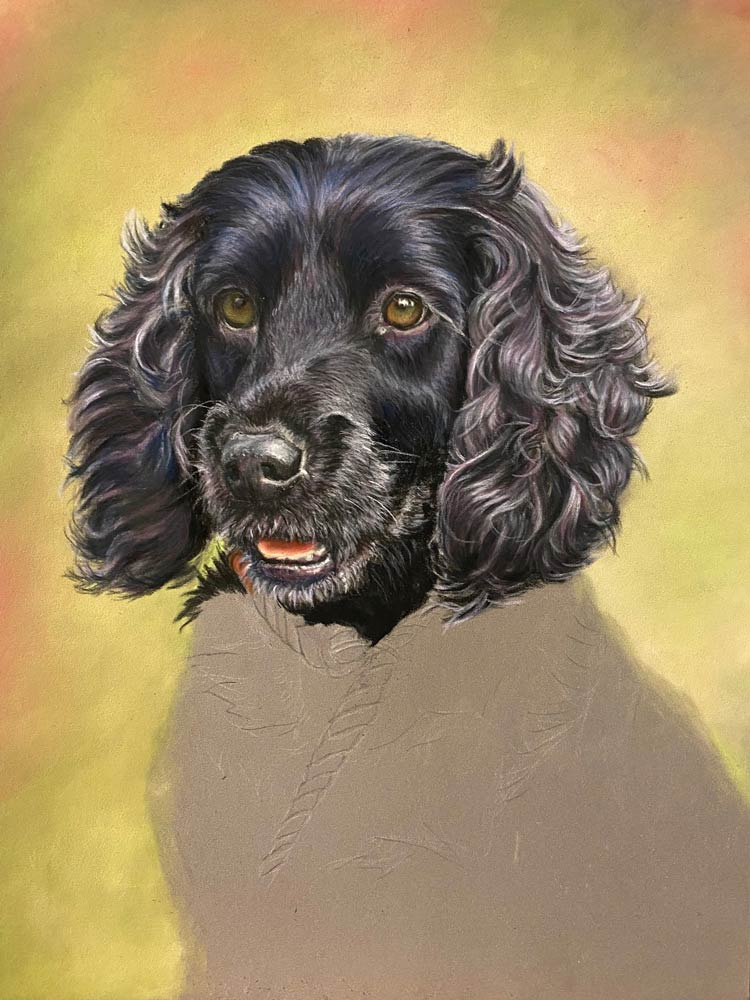 Bailey: The Artist's Experience 7
