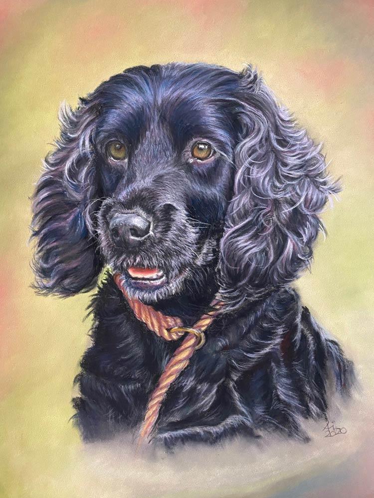 Bailey: The Artist's Experience 8