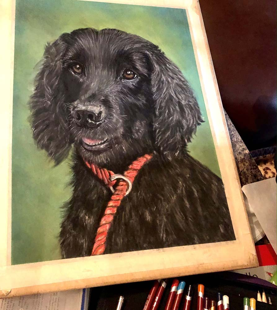 Bailey: The Artist's Experience 12