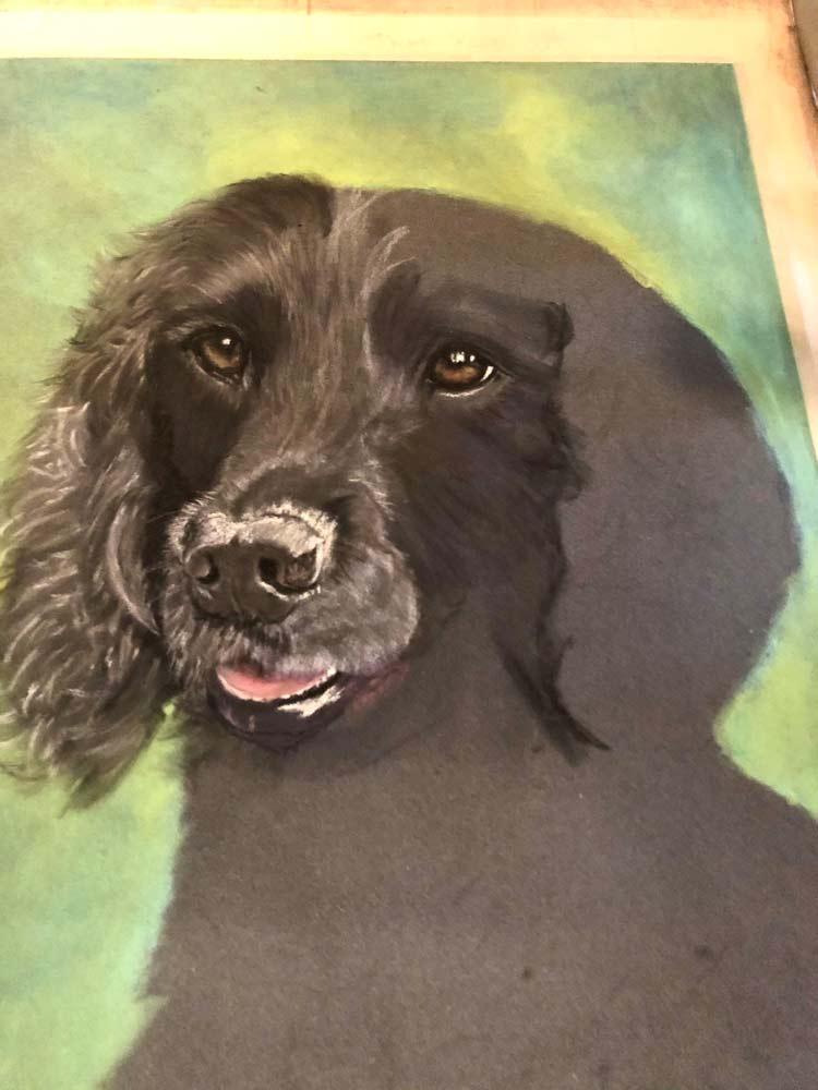 Bailey: The Artist's Experience 11
