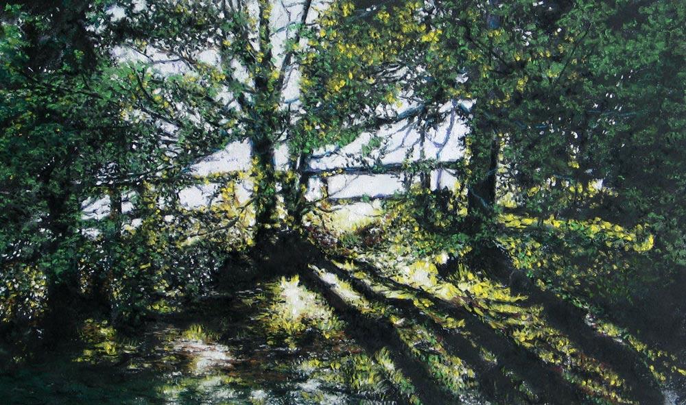 Dawn Light, by Julie Freeman.