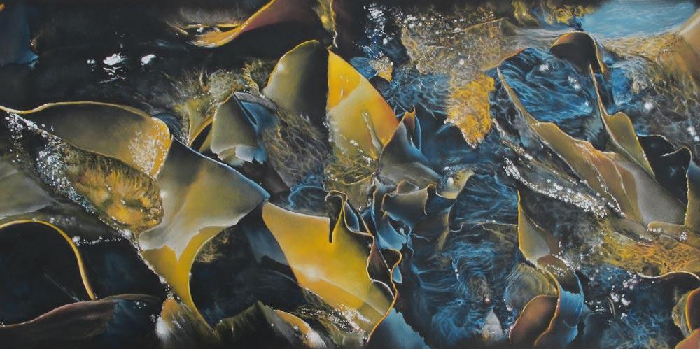 Southern Kelp, by Julie Freeman.