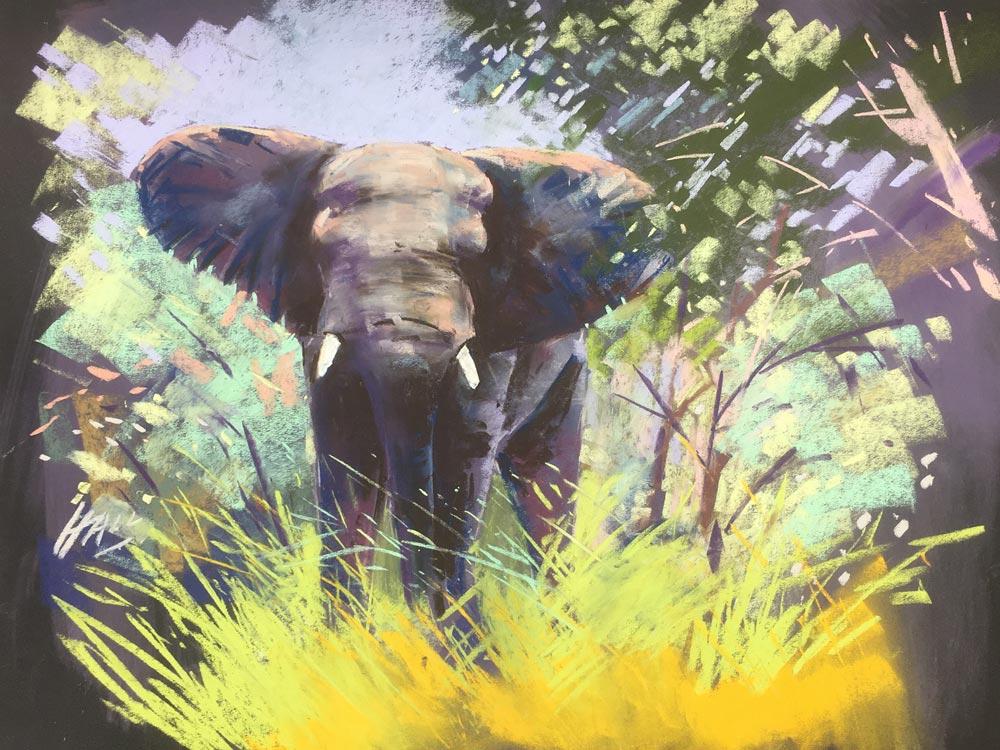 Jungle Book, by Steve Hall.