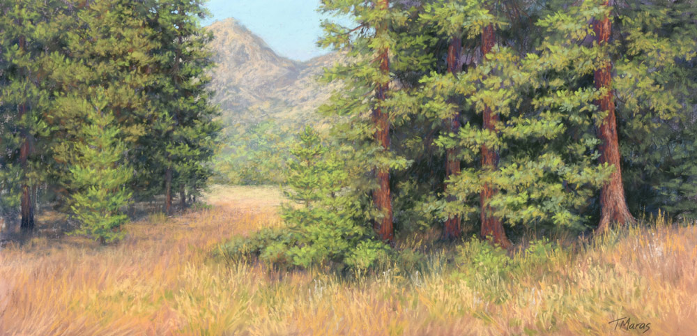 Completed conifer painting showing the variety of shapes in the trees.